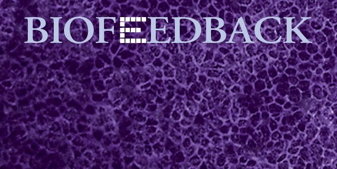 Biofeedback 6