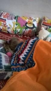 Lera-Trunova-spit-na-pravom-boku